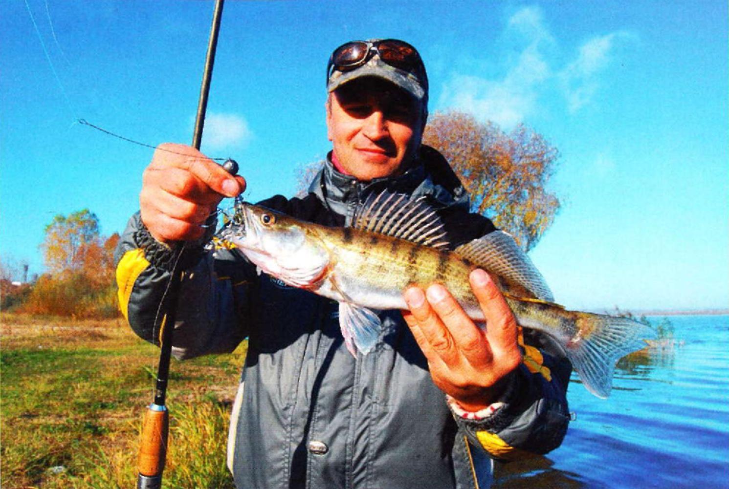 бесплатно рыбалка на судака