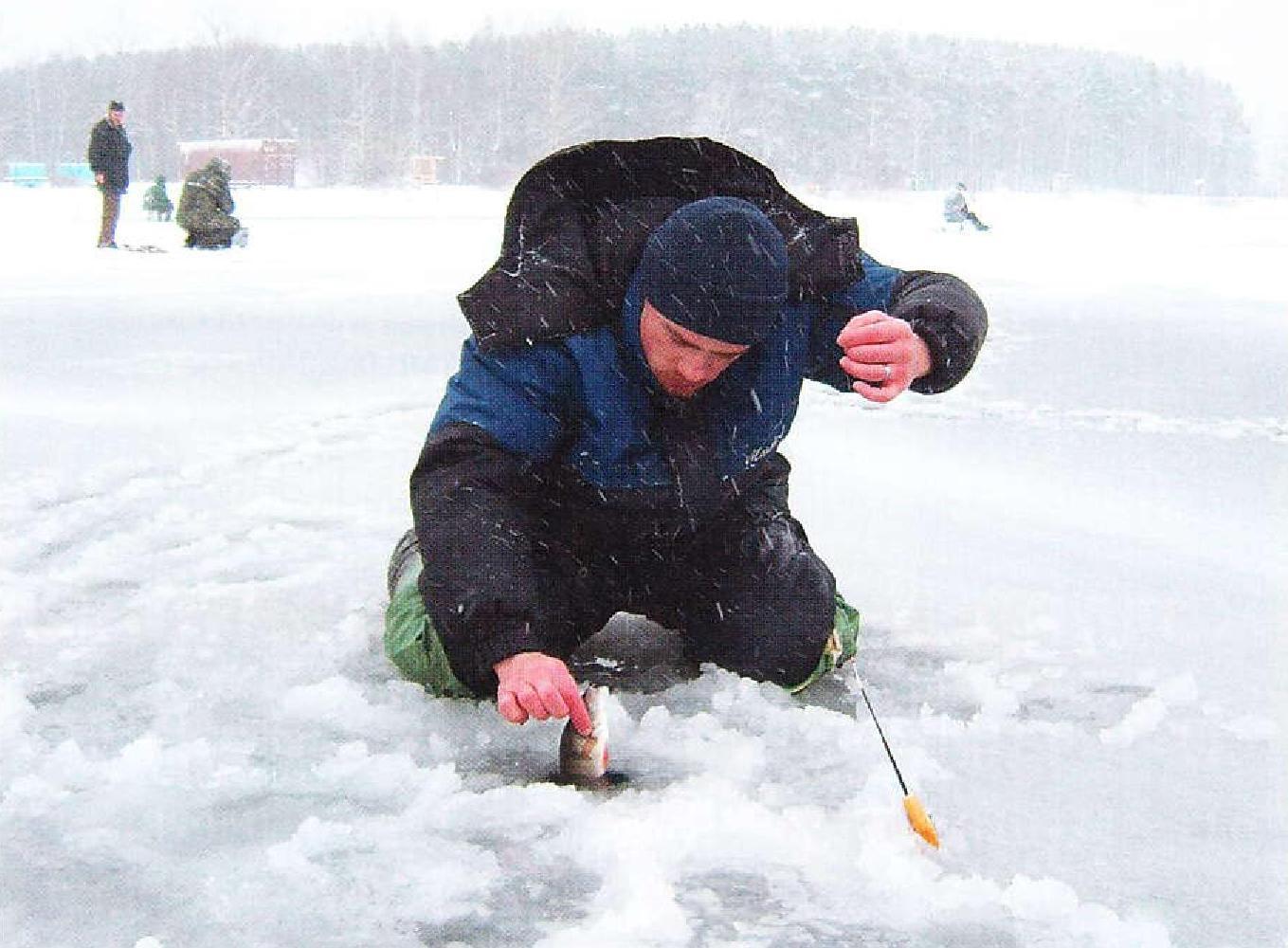 изготовление прикормки для рыбалки в домашних условиях