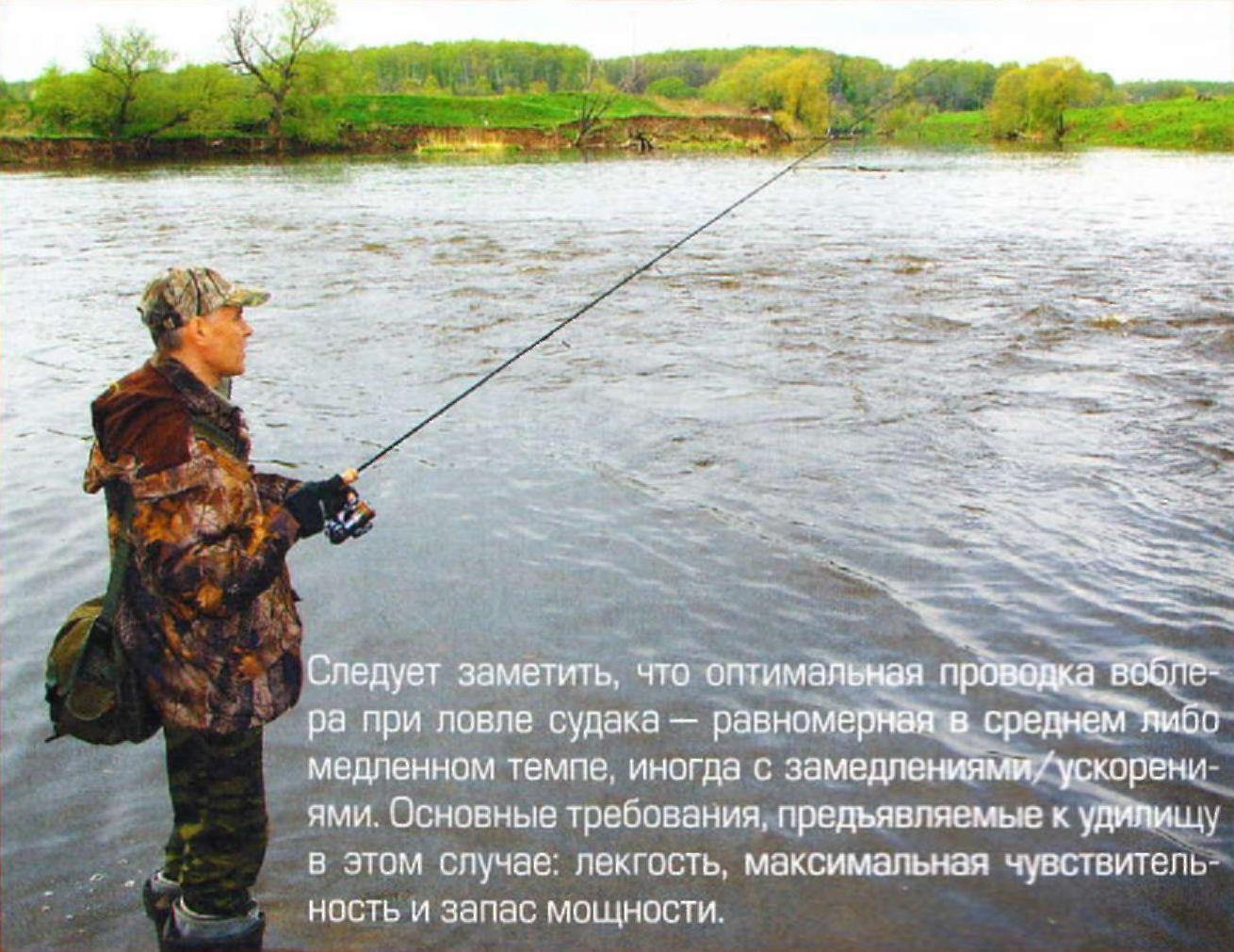лучший спиннинг для ловли судака
