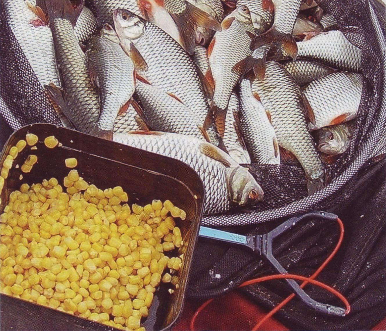 лен для прикормки рыбы